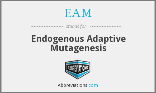 EAM - Endogenous Adaptive Mutagenesis