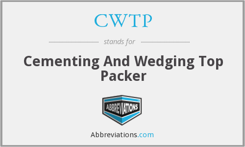 CWTP - Cementing And Wedging Top Packer