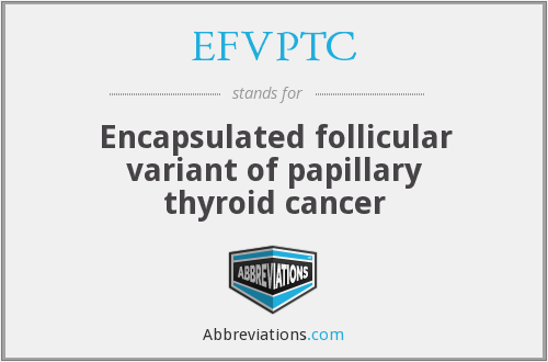 What does EFVPTC stand for?