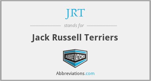 JRT - Jack Russell Terriers