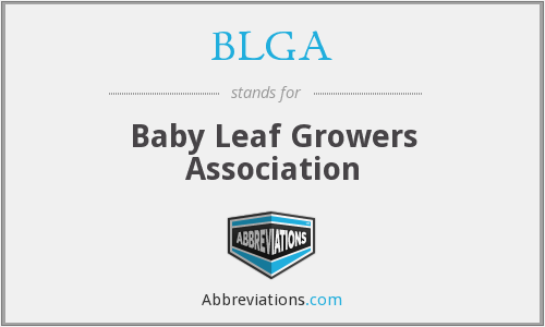 What does BLGA stand for?