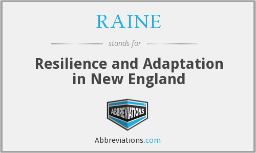 What does RAINE stand for?