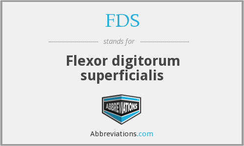 FDS - Flexor digitorum superficialis