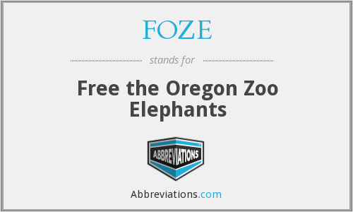 What does FOZE stand for?