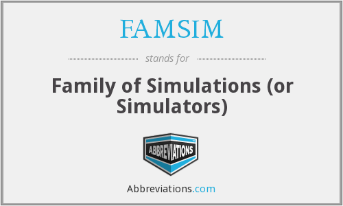 What does FAMSIM stand for?