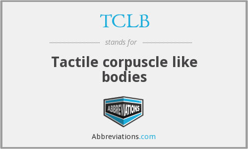 TCLB - Tactile corpuscle like bodies