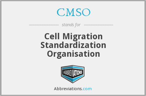 What does CMSO stand for?