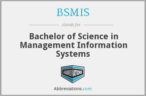 What does BSMIS stand for?