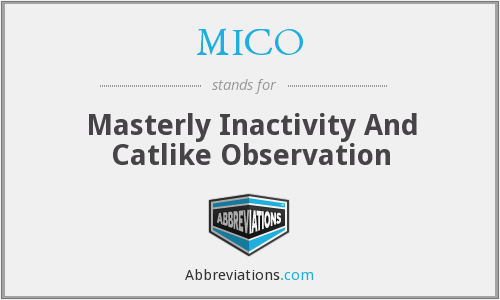 MICO - Masterly Inactivity And Catlike Observation