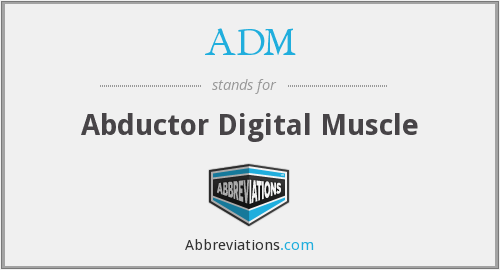 ADM - Abductor Digital Muscle