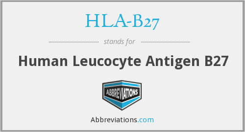 What does HLA-B27 stand for?