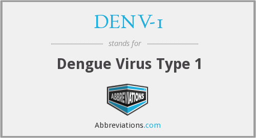 What does DENV-1 stand for?