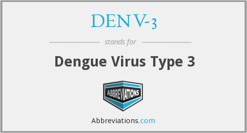 What does DENV-3 stand for?