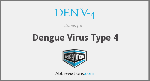 What does DENV-4 stand for?