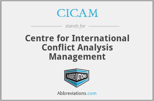 CICAM - Centre for International Conflict Analysis Management