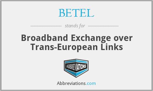 BETEL - Broadband Exchange over Trans-European Links