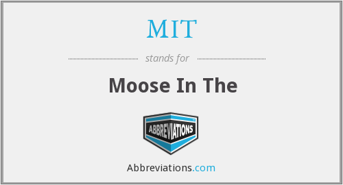 MIT - Moose In The