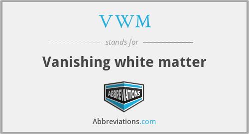 VWM - Vanishing white matter