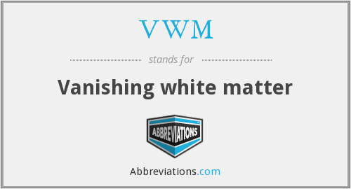 VWM - Vanishing white matter