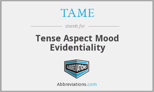 TAME - Tense Aspect Mood Evidentiality