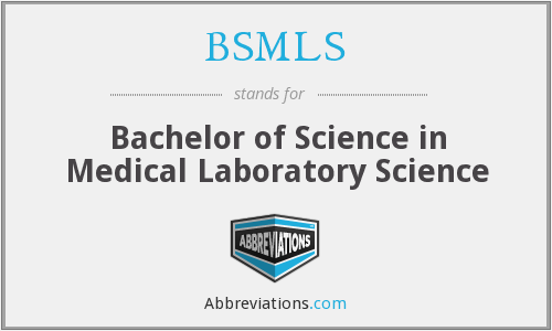 What does BSMLS stand for?