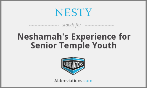 NESTY - Neshamah's Experience for Senior Temple Youth