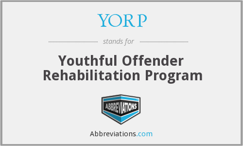 What does YORP stand for?