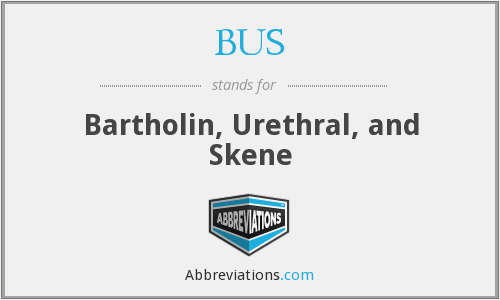 BUS - Bartholin, Urethral, and Skene