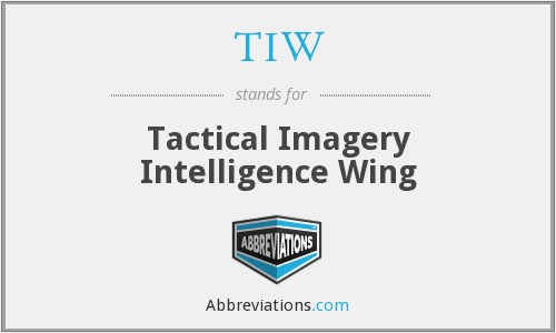 TIW - Tactical Imagery Intelligence Wing