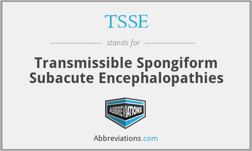 TSSE - Transmissible Spongiform Subacute Encephalopathies