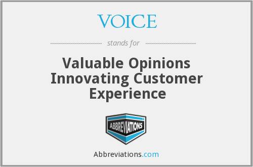 VOICE - Valuable Opinions Innovating Customer Experience