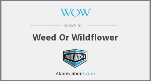 WOW - Weed Or Wildflower
