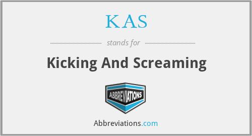 KAS - Kicking And Screaming