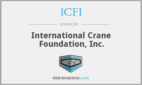 What does ICFI stand for?