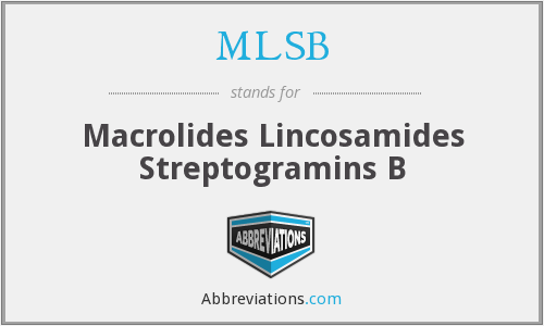 MLSB - Macrolides Lincosamides Streptogramins B