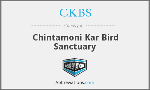 What does CKBS stand for?