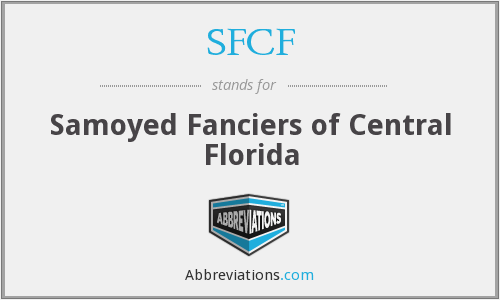 SFCF - Samoyed Fanciers of Central Florida