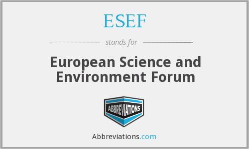 What does ESEF stand for?
