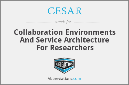 CESAR - Collaboration Environments And Service Architecture For Researchers