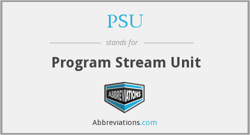 PSU - Program Stream Unit