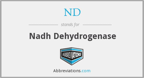 What does nadh stand for?
