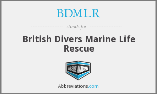 What does BDMLR stand for?