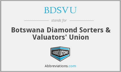 What does BDSVU stand for?