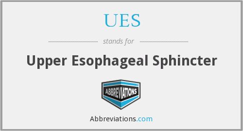 UES - Upper Esophageal Sphincter