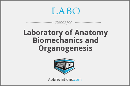 What does LABO stand for?