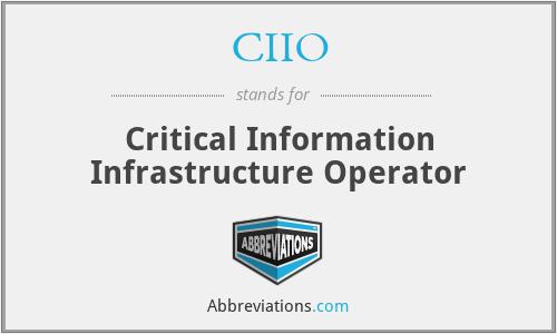 CIIO - Critical Information Infrastructure Operator