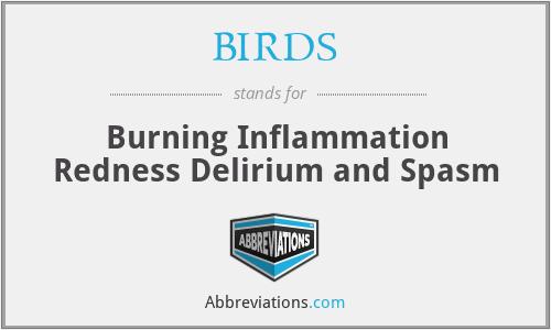 BIRDS - Burning Inflammation Redness Delirium and Spasm