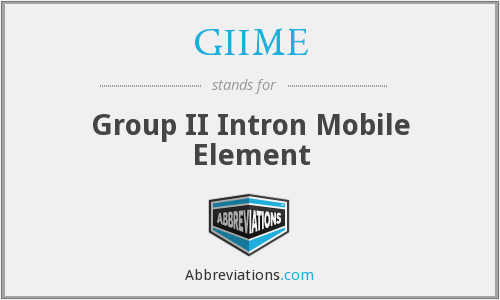 GIIME - Group II Intron Mobile Element