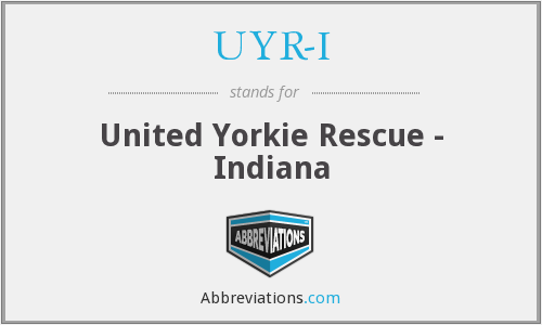 UYR-I - United Yorkie Rescue - Indiana