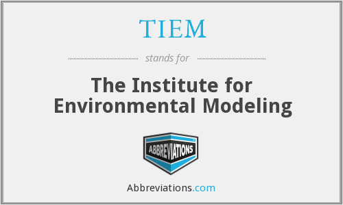 What does TIEM stand for?